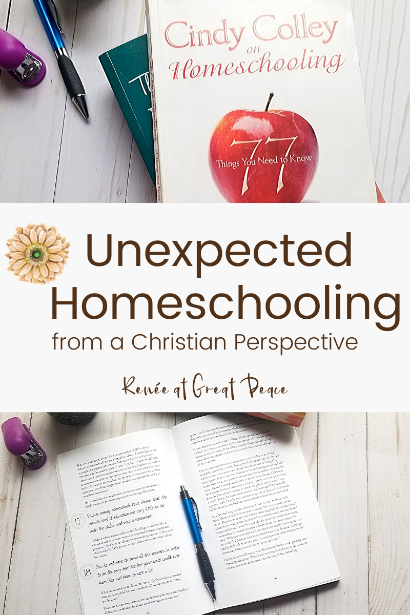 Unexpected Homeschooling