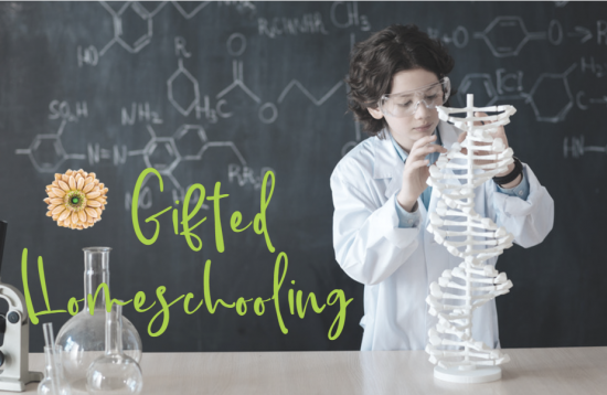 Gifted Homeschooling | Renée at Great Peace
