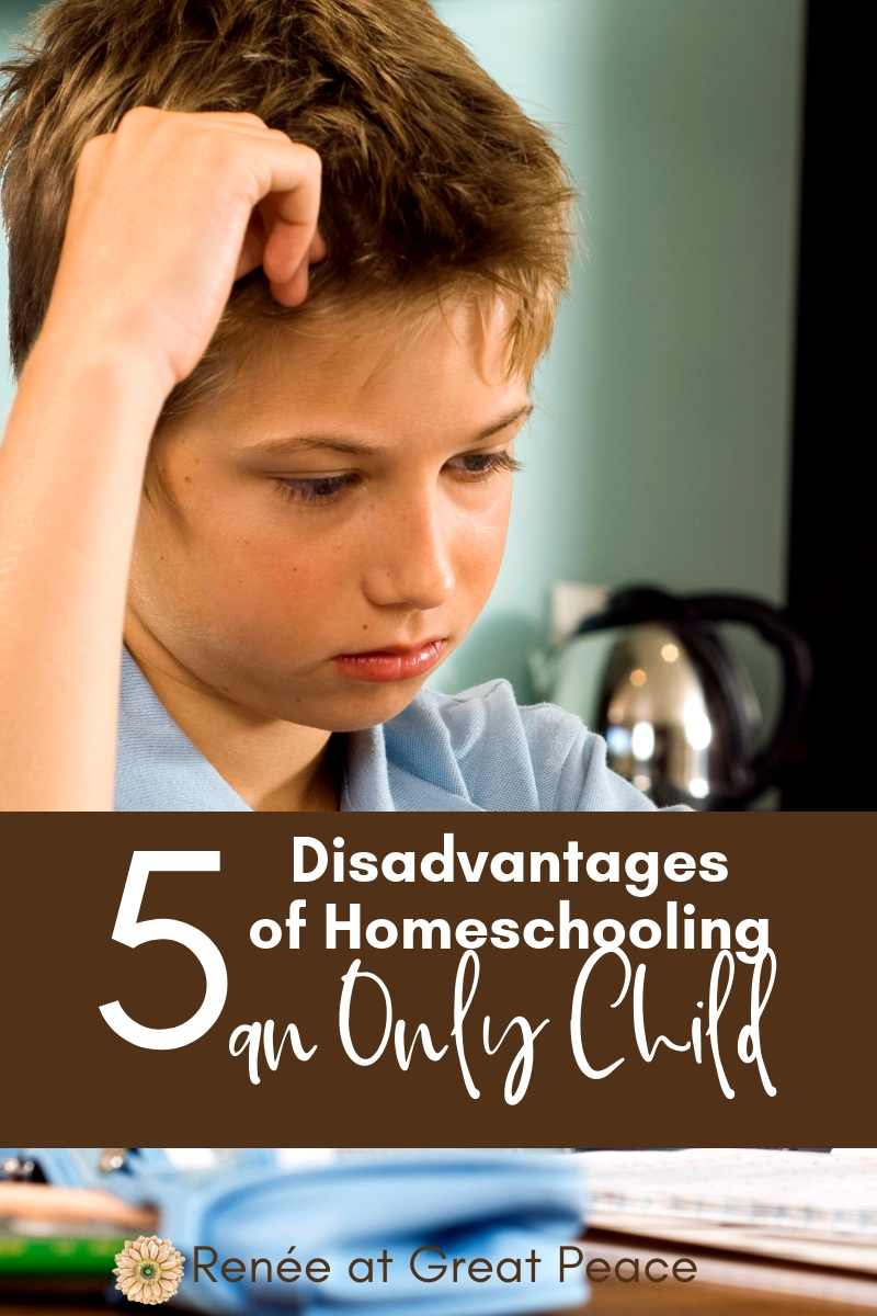 5 Disadvantages of Homeschooling an Only Child |