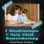 Homeschool Only Child