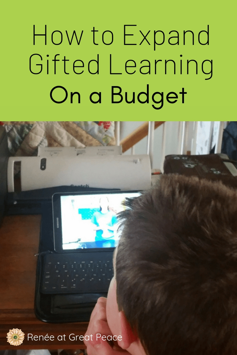 How to Expand Gifted Learning on a Budget | Renée at Great Peace #gifted #homeschooling #homeschoolmoms #ihsnet #gtchat