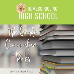 We're Homeschooling High School and Our 9th Grade Curriculum Picks