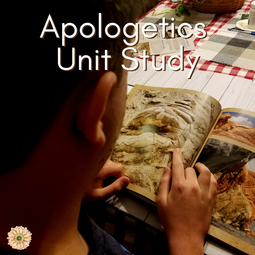 New Resource for Teaching Apologetics in Your Homeschool   Renée at Great Peace #homeschool #apologetics #fossils #science #ihsnet