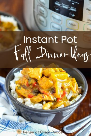 Instant Pot Fall Dinner Ideas for Your Family | Renee at Great Peace #mealplanning #familydinnerideas #familydinner #Falldinner #dinnerideas #dinner #fallyfamilydinners #ReneeatGreatPeace