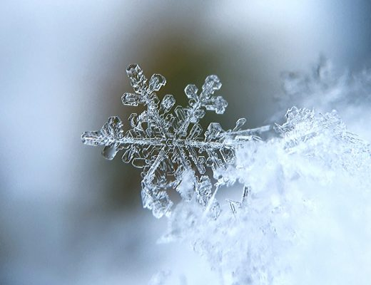 The Amazing Science of Snowflakes | Renee at Great Peace #science #snowflakes #snowscience #snow #homeschool #unitstudies #ihsnet