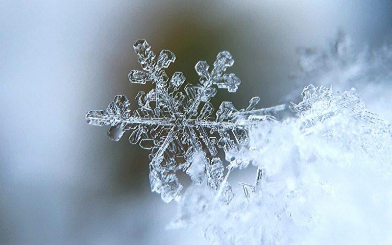 The Amazing Science of Snowflakes | Renee at Great Peace #science #snowflakes #snowscience #snow #homeschool #unitstudies #ihsnet