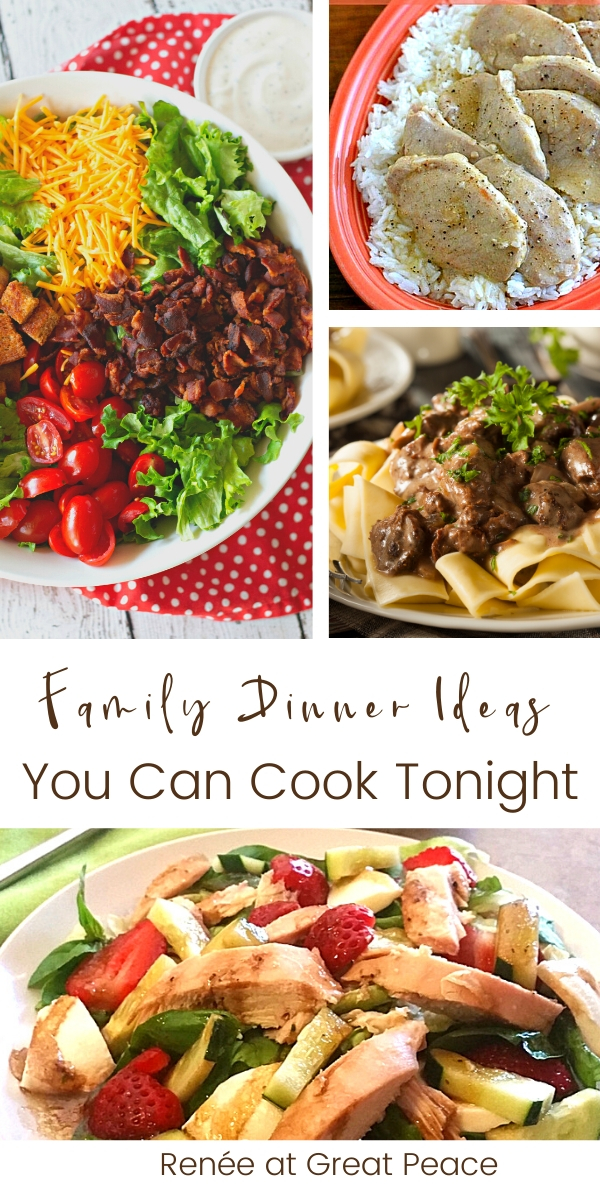 20 Family Dinner Ideas You Can Cook Tonight | Renee at Great Peace