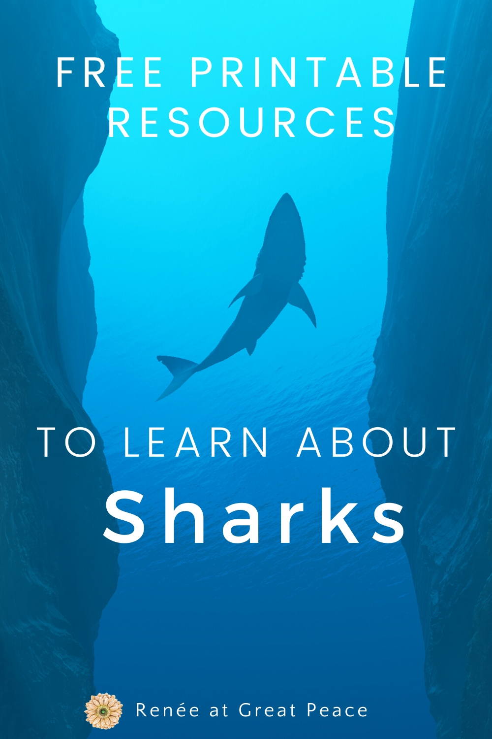 Printable Resources for Learning about Sharks | ReneeatGreatPeace.com #homeschooling #homeschool #education #sharks #printables #science #marinebiology